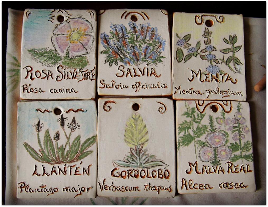 Placas de plantas aromáticas