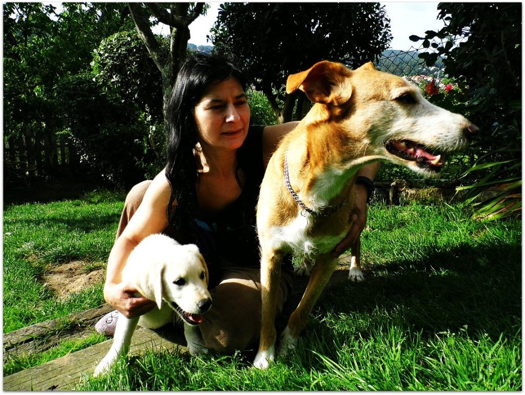 Mis perros Ruty y Clay